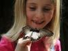 56-farfalle