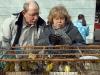 mercatino-degli-uccellini02